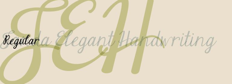 Janda Elegant Handwriting Font Family Fonts Com